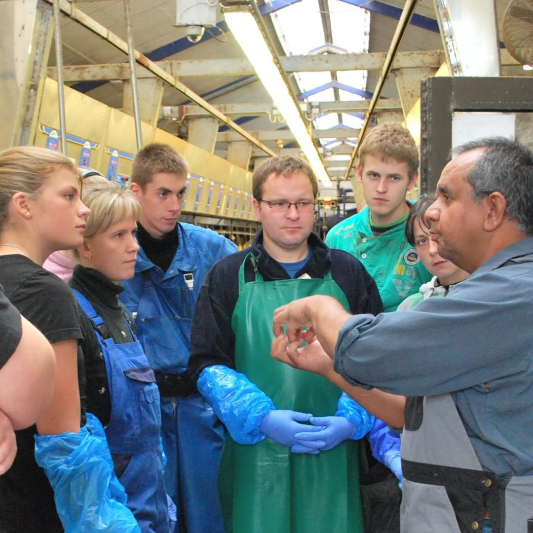 Juan Quezada teaches Swedish students in a milking parlour - Lean Farming and Danace